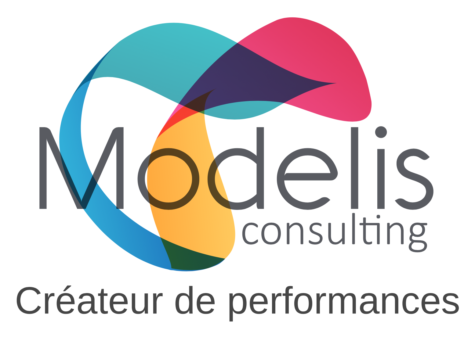 Modelis Consulting